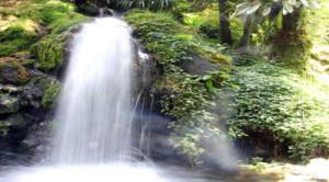 Lo ionizzatore d'acqua alcalina non aggiunge alcuna sostanza chimica o minerale all'acqua, ma divide i minerali presenti naturalmente nell'acqua in alcalini e acidi.